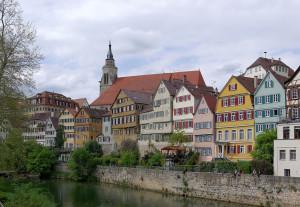 Regio_wildersueden_Neckarfront