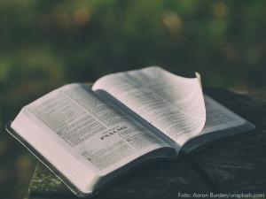 bibel_aaron-burden-113284